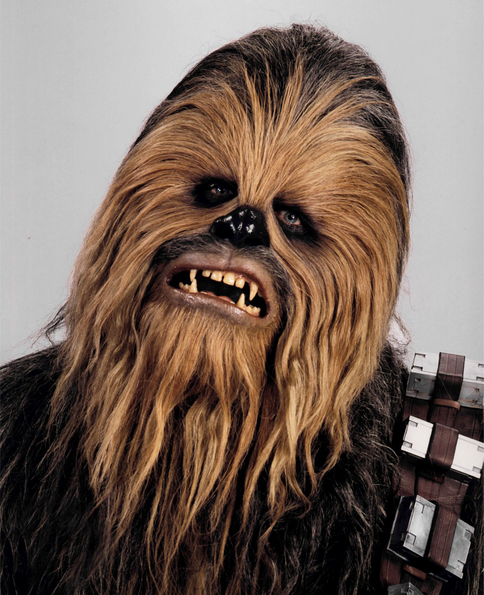 Chewbacca head shot