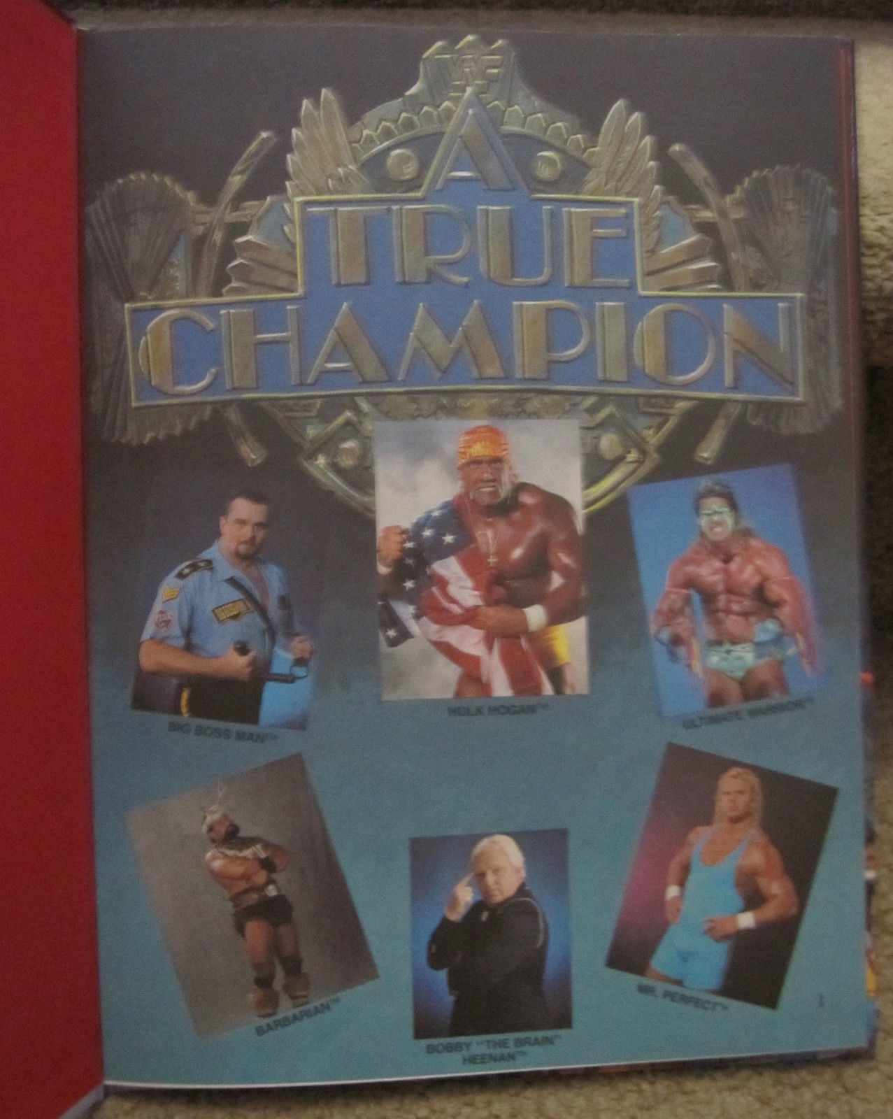Hulk Hogan A True Champion book back