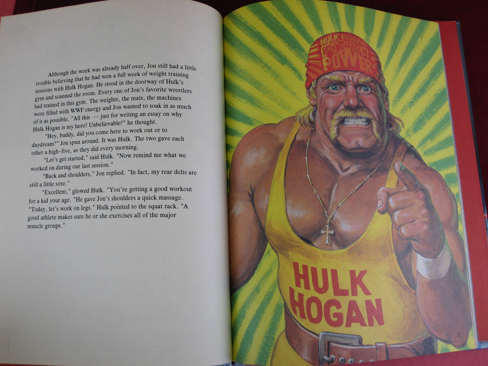 Hulk Hogan A True Champion book excerpt