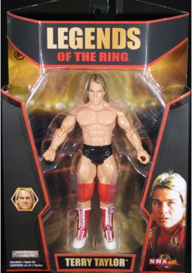 TNA Terry Taylor figure