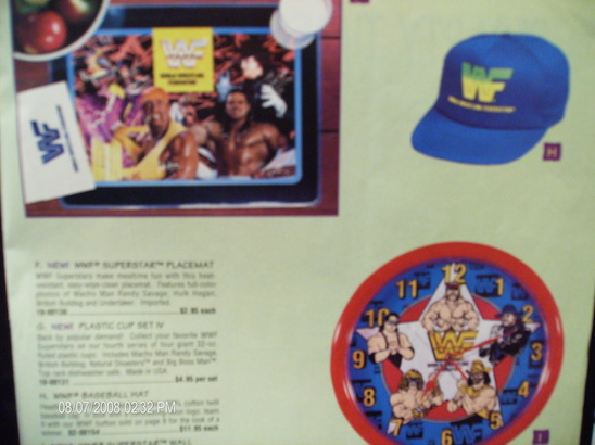 WWF Placemat 1991 smaller resolution