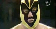 INDUCTION: The Bee Family – Is that Brunzell or JYD?  MASKED CONFUSION INDEED!