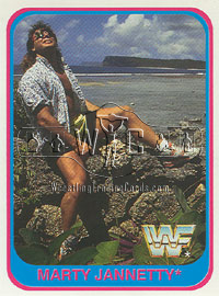 Marty Jannetty 1991 trading card