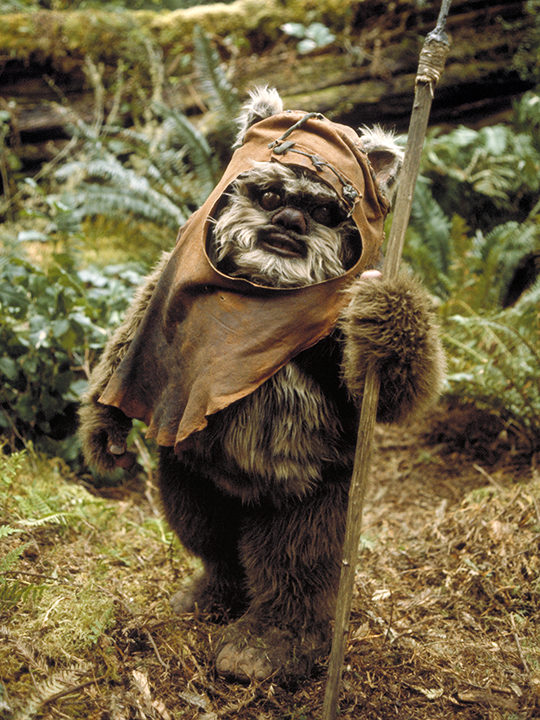 Wicket on Endor Star Wars Return Of The Jedi