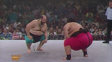 Induction: The WWF Sumo Match – Yoko and Quake battle for squatter's rights