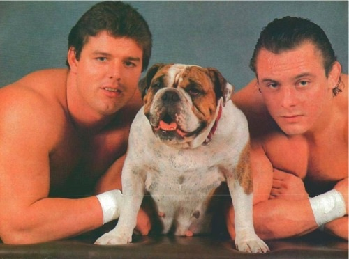 The British Bulldogs' with Matilda The Dog