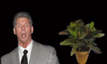 Headlies: Mitch The Plant Granted His Release From WWE